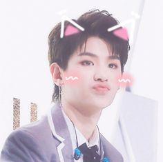 黄明昊 - Nine Percent soloist / Nex7 is the cute maknae Cat Ears, In Ear Headphones, Pearl Earrings, Cute, Pearl Studs, Over Ear Headphones, Kawaii, Catgirl, Bead Earrings
