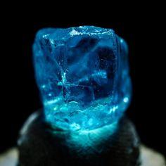 いいね!534件、コメント3件 ― Teruhiko Kitagawaさん(@teruhiko_kitagawa)のInstagramアカウント: 「アパタイト(apatite): マダガスカル産の水色の石。 美しい結晶の色や透明感は宝石級だが、 軟かく脆いため宝飾用途には向かず、 アクセサリーとして用いられる。 カラーバリエーションは黄、緑、…」