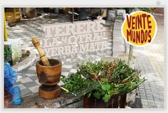 Yerba Mate  VeinteMundos Magazines