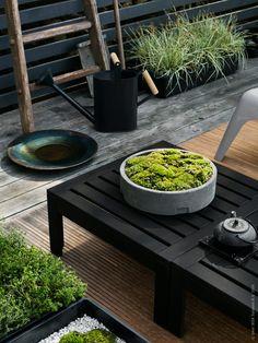 Vem drömmer inte om en harmonisk trädgård? Kanske inspirerade av japanska trädgårdar, med krattat grus och mossbeklädda stenar. Här har vi skapat enenklare version med hjälp av de nya grå planteringsbrickorna SALLADSKÅL.