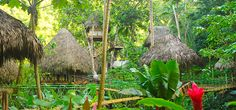 Dominican Treehouse Village | The best tourist attraction in the Dominican Republic