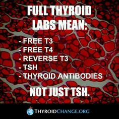 Thyroid lab info... Make sure your doctor is ordering more than TSH only! Most ONLY test TSH which doesn't give the whole picture