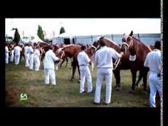 COSTUMBRES RURALES Sommete de l'Elevage 2013 Part1/3