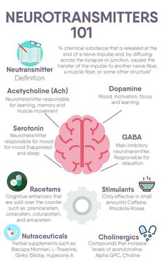 Neurotransmitters 101 - Image Credits: Premier Health And Wellness Group Brain Anatomy, Human Anatomy And Physiology, Medical Anatomy, Brain Facts, Nursing School Notes, Medical School, Nursing School Humor, Brain Science, Computer Science