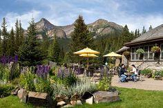 Photo Gallery | Lake Louise | Canadian Rocky Mountain Resorts