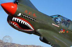 """P-40E """" TIGER """""""