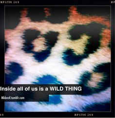 where the wild things are? EVERYWHERE?