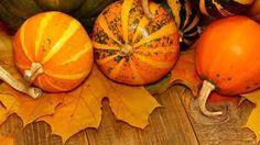 Bildergebnis für hintergrundbilder 1920x1080 herbst Pumpkin, Vegetables, Food, Wallpaper Backgrounds, Pumpkins, Veggie Food, Butternut Squash, Vegetable Recipes, Squash