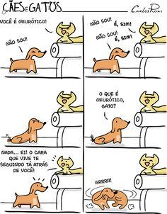 Cães e Gatos – Neurótico 2