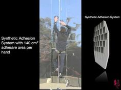 Stanford research: Human climbing with efficiently scaled gecko-inspired dry adhesives