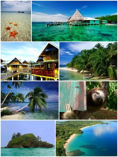 Thinking Panama for Christmas! Skip that creepy little fellow bottom right, but otherwise I'll take it!