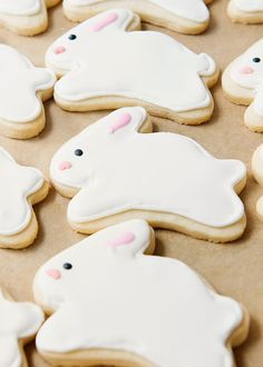 bunny cookies   baked bree