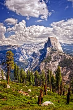 Half Dome - Yosemite National Park, California