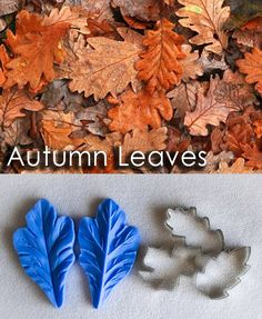 Autumn leaves cutters and veiners, sugar flowers, gumpaste flowers, cutters, veiners,leaves Edible Diamonds, First Dates, Candy Shop, Sugar Flowers, Gum Paste, Types Of Art, Food Coloring, Autumn Leaves, Flower Designs