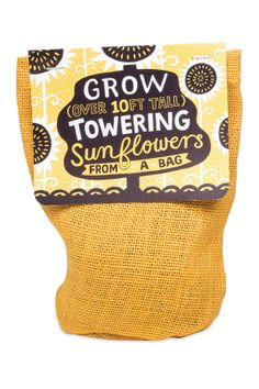 Towering Sunflowers Bag Plant