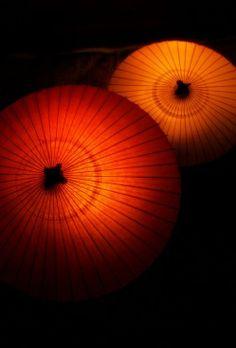 Japanese Umbrellas by Tashi Delek