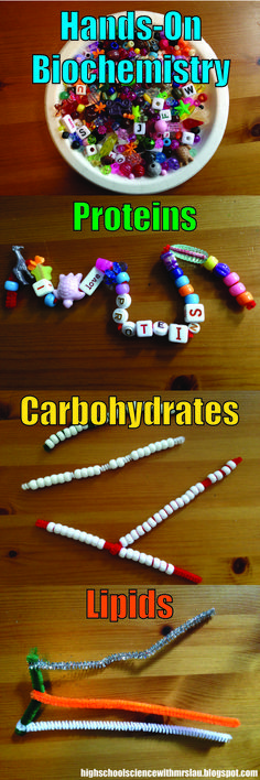 How to teach Biochemistry with Beads and Pipe Cleaners: Make learning concrete and fun!  High School Science with Mrs. Lau's Blog