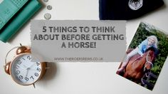 1. What kind of horse is right for you?   This is something that I have made mistakes on before although I have managed to make th...
