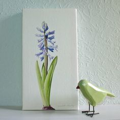 'hyacinth' canvas print by the botanical concept | notonthehighstreet.com