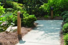 Super bright, energy-efficient LEDs light a garden pathway to ensure pedestrian safety.