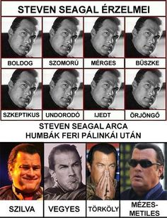 Steven Seagal, Funny Memes, Jokes, Grumpy Cat Humor, Chuck Norris, Can't Stop Laughing, Funny Cats, Haha, Funny Pictures