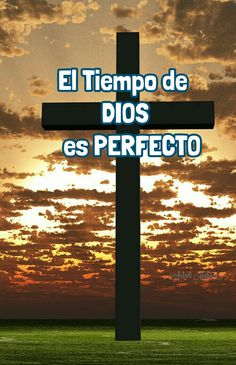 ARACELI MALPICA- Posters : DIOS ES PERFECTO