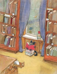 cat reading in a library