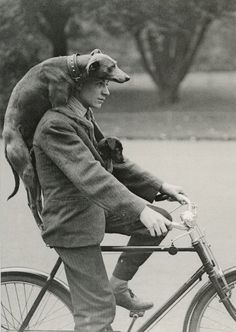 yay for dogs, bikes and old-timey fun.....