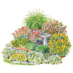 Garden Plans That Peak In Fall