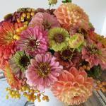 Sunflowers, Zinnias, and Dahlias