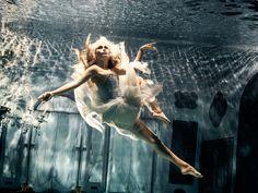Hasselblad H5D : Les coulisses d'une photo aquatique