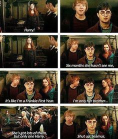 Ron: Six months she hasn't seen me, it's like I'm a Frankie first year. I'm only her brother. Seamus: She's got lots of them, but only one Harry. Ron: Shut up Seamus Harry And Ginny, Harry Potter Love, Harry Potter Universal, Harry Potter Fandom, Harry Potter Memes, Harry Potter World, Saga, Yer A Wizard Harry, Mischief Managed