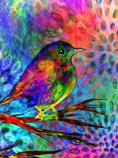 Kaleidoscope..by Robin Mead