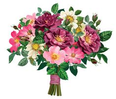 Rose Bouquet Transparent Clipart