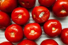 When Life Hands You Overripe Tomatoes, Make Tomato Water (So Says Chef Greg Vernick) photo