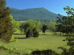 Unity Dr LOT 7, Rockbridge Baths, VA / $65,000 Mountains, meadows, woodlands -- and access to the Maury River! Estate living near historical Rockbridge Baths, VA. Over 100 acres of greenspace, trails, picnic areas. Elegant Conservation Subdivision. 15 mins from Lexington. Near Goshen Pass. 30 mins from Warm Springs/Hot Springs/The Homestead Resort. Underground utilities. Covenants protect property values.  http://www.yourrockbridgeconnection.com/active_listings