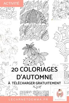 Petit article rapide pour vous partager des coloriages sur le thème de l'Automne. Ma fille est une grande fan de coloriages. Elle peut en faire plusieurs