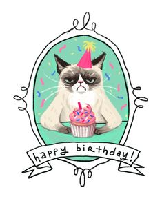 grumpy cat birthday card - Google-Suche