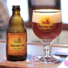 França, Bélgica, Itália, Estados Unidos e até cervejas neozelandesas. As cervejas gringas e artesanais que você pode procurar sem medo