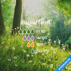 Magical Forest - Essential Oil Diffuser Blend