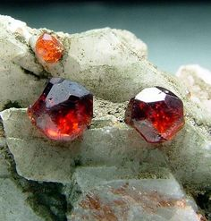 Three beautifully terminated gem Spessartine crystals stand out on a Feldspar matrix green with Chlorite coating.