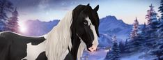 The latest news from the horse game Star Stable Online! Star Stable Horses, Two Horses, Horse Star, Horse Horse, Appaloosa, Star Citizen, Yule Goat, Winter Horse, Horse Games