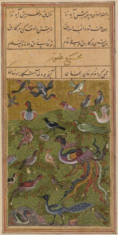 Late 15th Century Persian The Hoopoe Tells the Other Birds about the Simurgh (full picture) From The Conference of the Birds