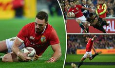 Lions 31 Hurricanes 31 AS IT HAPPENED: Seymour double but Lions crumble to Cake Tin draw - TodayUSA