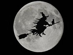 Free Image on Pixabay - Moon, Witch, Black Cats, Halloween Vintage Halloween, Halloween Images, Diy Ombre, Witch Coven, Moon Witch, Black Animals, Black Cats, Witches, Butterflies