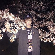 大好きなみんなでお花見してきたよ 桜ってなんかかなしくなる 散る時はかなしいけど来年の桜がたのしみだな〜 #花よりモツ煮
