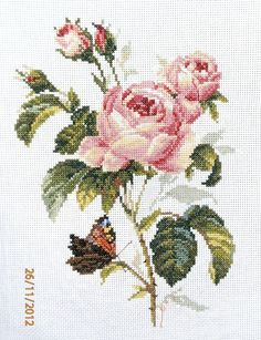 Rose et Papillon