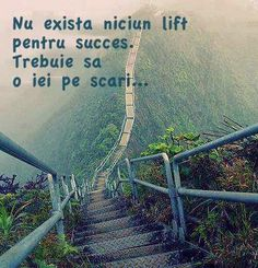 "Fitness Motivation - ""There Is No Elevator To Success. You Have To Take The Stairs . Quotes Dream, Motivacional Quotes, Life Quotes Love, Great Quotes, Quotes To Live By, Quotes Inspirational, Motivational Sayings, Famous Quotes, Apple Quotes"