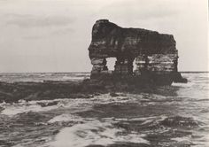Elephant Rock, Hartlepool, England - this had eroded by my childhood years and only the back legs remained, but my uncles talked about it so it is great to have a photograph. Bishop Auckland, Northern England, Summer Memories, Local History, Back In Time, Historical Pictures, Black And White Pictures, Old Pictures, East Coast