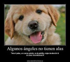 Angelitos.